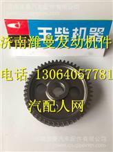 D30-1006021玉柴4108凸轮轴正时齿轮/ D30-1006021