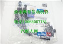 G2J00-3705070玉柴天燃气发动机高压导线组件  /G2J00-3705070