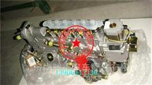 VG1093080110重汽金王子两气门EGR重庆燃油喷射泵/VG1093080110