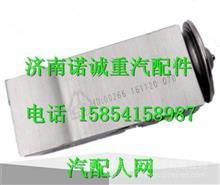LG1613822016重汽豪沃HOWO轻卡空调膨胀阀/LG1613822016