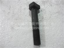 供应中国陕汽德龙F3000底盘配件车轮螺栓/DZ9112342071