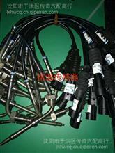 陕汽新M3000排温传感器/DZ95189711233
