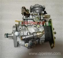 3960900EQ1118GA軍車康明斯6BT5.9發動機VE轉子高壓燃油泵/3960900/0460426401