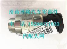 中国重汽豪沃T5G气压信号灯开关/811W25503-0275