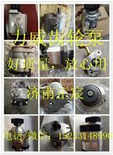 QC32+32/15-BJ 配奔驰OM502发动机 助力泵 齿轮泵/QC32+32/15-BJ