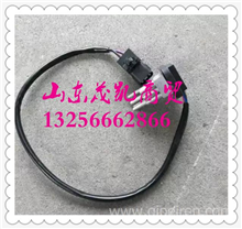 81M-01010-1华菱汉马调速电阻/81M-01010-1