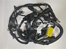 C4388985  电控模块线束总成/4388985