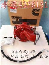 K38淡水泵4376119别拉斯7549矿山车功率750kW/4376119