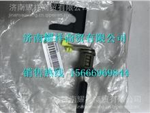 WG1684347005重汽新斯太尔D7B门锁芯/WG1684347005