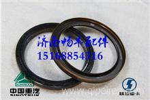 201V01510-0283重汽曼MC11发动机曲轴后油封/201V01510-0283