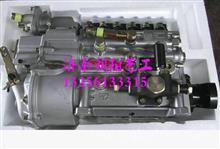 VG1095080190重汽豪沃喷油泵总成/VG1095080190