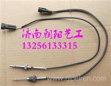 WG1034121033重汽新款排气温度传感器/WG1034121033