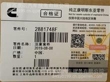 ISF3.8活塞套件/2881748F
