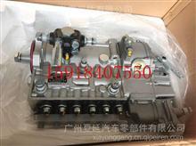 潍柴动力WD615高压油泵总成/612600081246