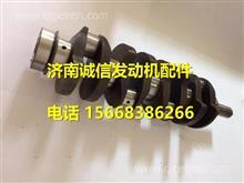FA100-1005001A-P玉柴YCFA100发动机曲轴总成/ FA100-1005001A-P