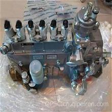6738-71-1310燃油喷射泵/6738-71-1310燃油喷射泵