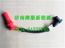 13060237濰柴WP6天然氣高壓線組件/13060237