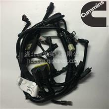 东风康明斯ISLE电喷发动机电控模块线束总成 C5268336/5268336