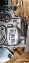 进口A2300高压油泵 燃油泵4901017/4901017