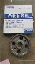 玉柴4105凸轮轴齿轮1DQ600-1006021/1DQ600-1006021