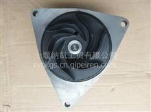 全网最低价一手货源客车工程机械东风康明斯发动机水泵/5291445
