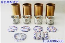 云内动力发动机配件云内高温氧化四配套六配套/4100QBZL