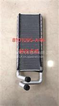 8101095-A46解放龙威虎威空调散热网FAW/8101095-A46