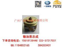 一汽解放大柴道依茨B6M2012输油泵总成/1106250A30D