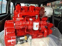 东风康明斯4BTAA3.9发动机总成4BT3.9-C100/4BT3.9-C100