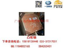一汽解放大柴道依茨B6M2012凸轮轴/1006010-56D