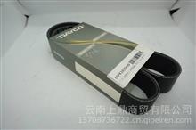 岱高发动机皮带多楔带/10PK1025HD