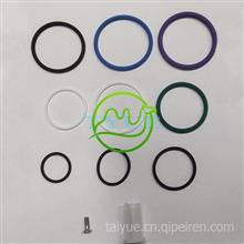 O形环共轨喷油器修理工具F00VX99995+   F00HN37008 修理包