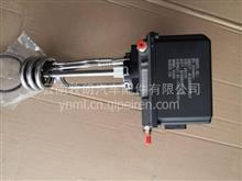 重汽豪沃轻卡亲人配件MC04尿素泵总成/LG9704560504
