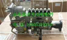 612600061225潍柴WD615高压油泵