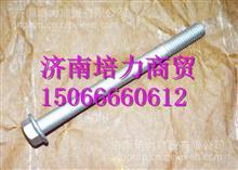 FAT165990250上菲红C9发动机齿轮室螺栓/FAT165990250