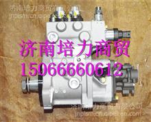 FAT5801479266上菲红C13燃油泵/FAT5801479266