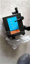 天龙举升油泵/5005020—C4300
