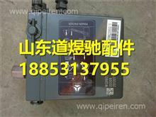 重汽豪沃A7電動駕駛室舉升泵 WG9925822002