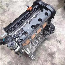长丰猎豹黑金刚 阁瑞斯 猎豹奇兵4RB2 4RB3 4RB1 3RZ发动机总成/现代2.0T D4EA