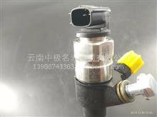 云内动力原厂配件HA10000307喷油器总成YN38CR-110004/HA10000307喷油器总成YN38CR