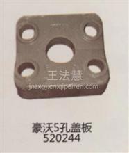 重汽配件中心销售豪沃5孔盖板520244/520244