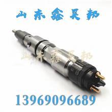中国重汽原厂配件豪沃T5G原装发动机喷油器博世正品MC07曼机专用/13969096689
