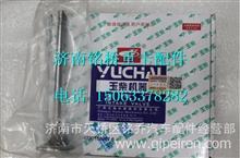 LN100-1003111B玉柴YC6113CNG进气门