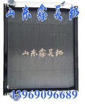 LG9704530021豪沃轻卡统帅悍将发动机散热水箱总成散热器散热芯