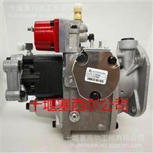 3059657重庆康明斯NT855发动机PT燃油泵总成/3059657