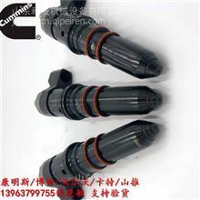 特雷克斯矿车 康明斯M11-C300发动机喷油器3087648 发动机部件/康明斯代理