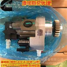 福田康明斯ISGe5-430 430马力国五 柴油发动机燃油泵4327066RX/康明斯代理