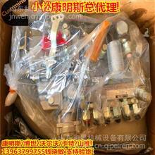 4063844燃油泵(杰克赛尔燃油泵)小松柴油泵6738-71-1210 /康明斯燃油泵进口