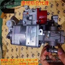 船舶维修 中国康明斯KTA19-G8船用燃油泵4999451船舶配件/4999451