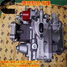 4999451燃油泵3037216适配康明斯KTA19-G8船用 中国船级社提供/4999451-28